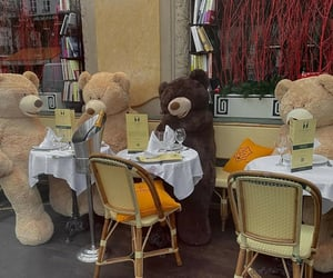 aesthetics, bears, and champagne image
