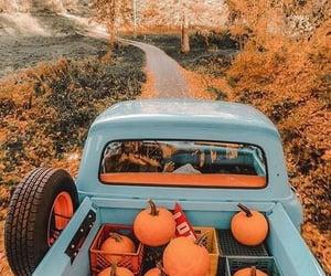 autumn, autumn movies, and fall image