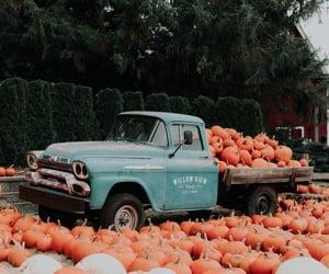 autumn, pumpkins, and autumnal image