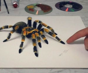 3D art, paintings, and art image