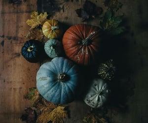 pumpkin, autumn, and dark image