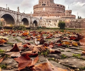 autumn, leaves, and travel image