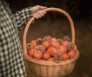 apple, vintage, and autumn image