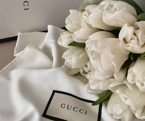 flowers and gucci image