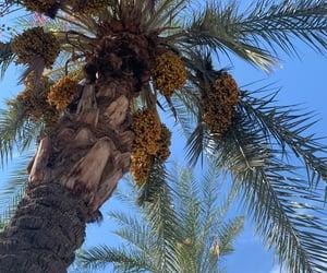 aesthetic, arizona, and blue sky image