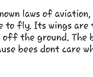 bee, life, and fly image