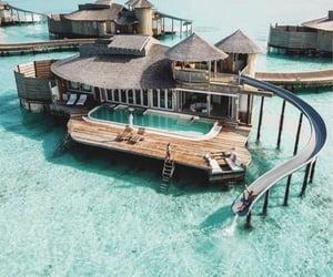 Maldives 🌴