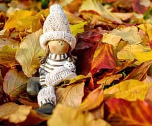 autumn, doll, and leaves image