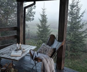 nature, book, and autumn image
