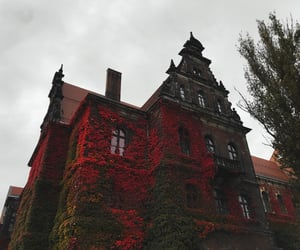 architecture, autumn, and brown image
