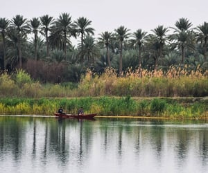 iraq, middle east, and nature image