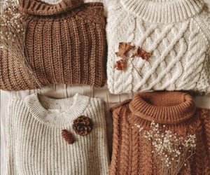autumn, comfy, and cozy image