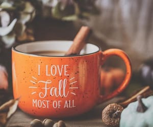 aesthetic, autumn, and Cinnamon image