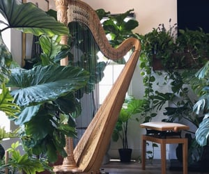 harp, plants, and soft aesthetic image