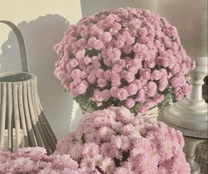 aesthetic, barbie, and flowers image