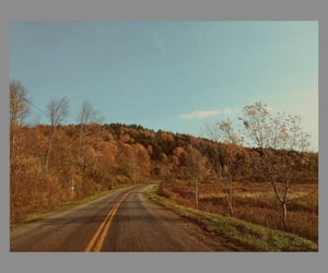 autumn, beautiful, and drive image
