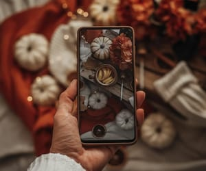 aesthetic, autumn, and camera image