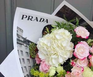 flowers and Prada image