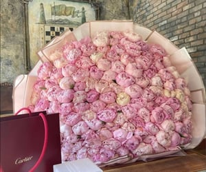 fashion, flowers, and luxury image