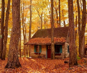 autumn, cabin, and nature image