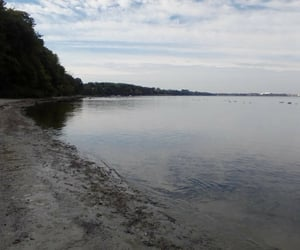 Herbst, natur, and strand image