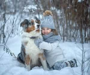 adorable, snow, and winter image