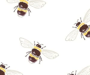wallpaper, bee, and cute image