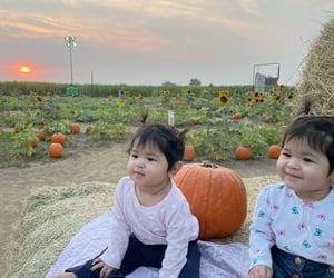 babies, october, and pumpkin image