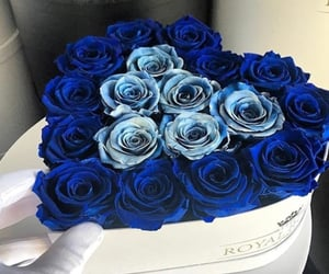 blue, flowers, and nosegay image