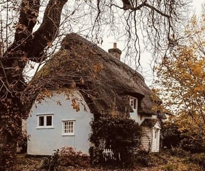 aesthetic, autumn, and exterior image