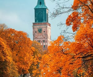 autumn, finland, and nature image