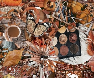 aesthetic, autumn, and pumpkins image