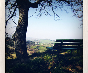 bench, iphone, and polaroid image