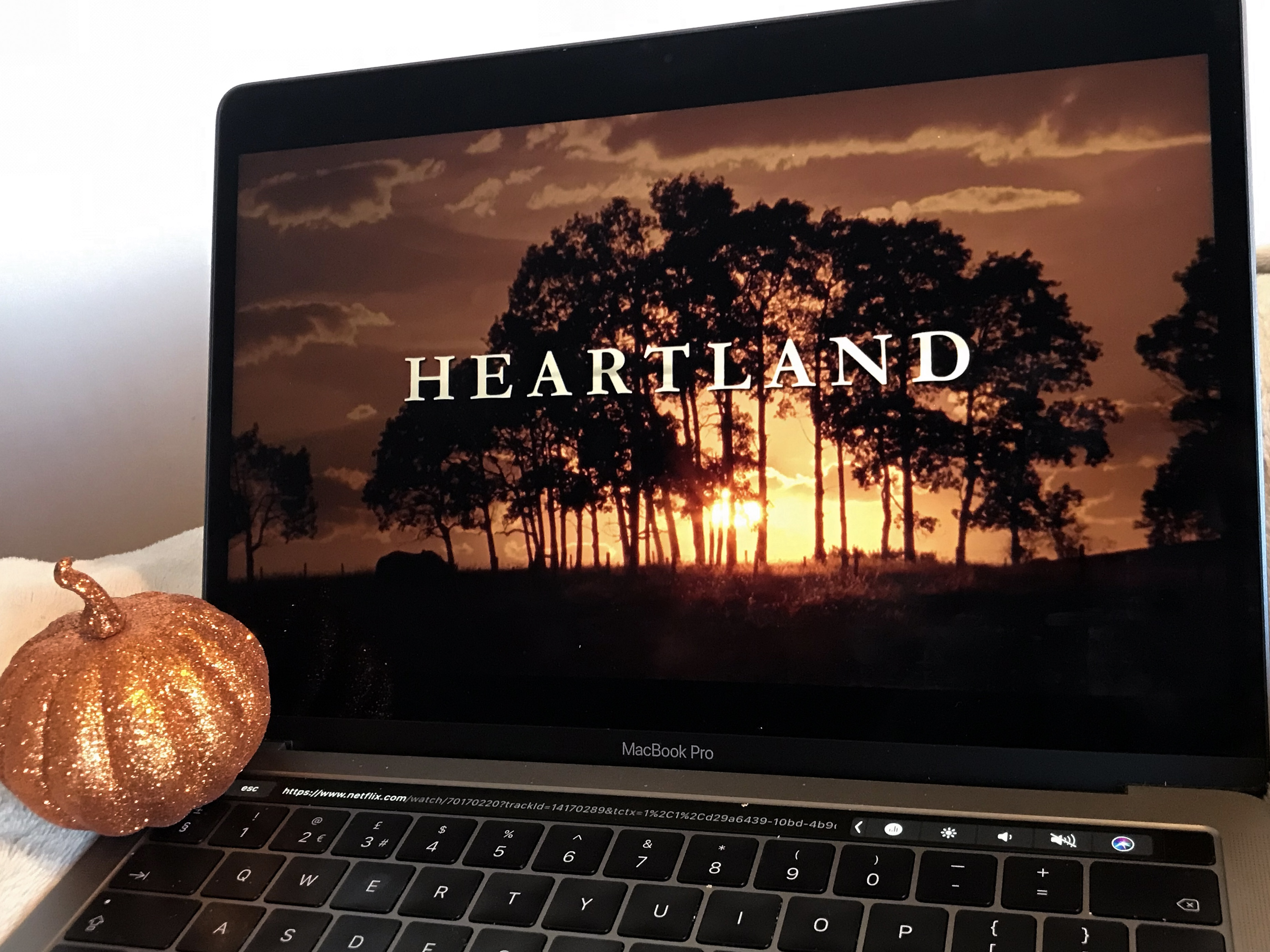 article, heartland, and stranger things image
