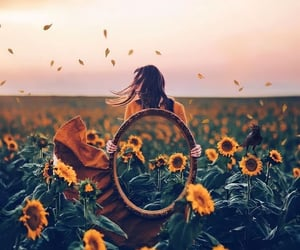 girl, photography, and sunflowers image