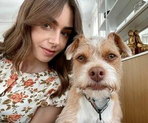 brown hair, girl, and dog image