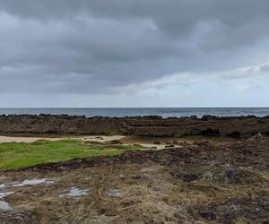 beach, hawai'i, and hawaii image