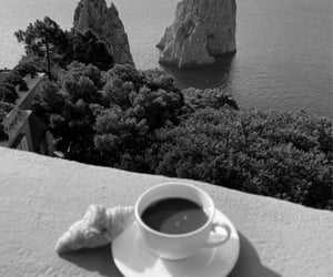 b&w, coffee, and nature image