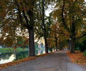 autumn, germany, and perspectives image