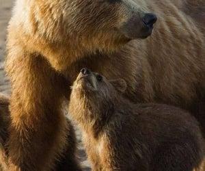 Safe by moms side.....