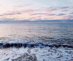 Sea life⚓️