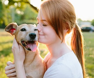 mental health, emotional support animal, and psychology image