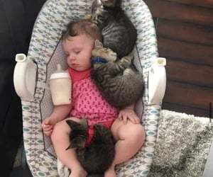 animals, baby girl, and cute baby image