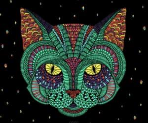 colores, felino, and gato image