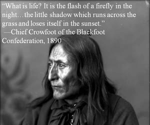 1890, in the sunset, and blackfoot confed image