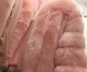 aesthetic, couleurs, and coat image