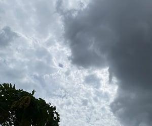 bright, dark, and grey image