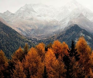 mountains, wallpaper, and fall image