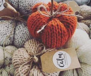 autumn, cosy, and pumpkin image
