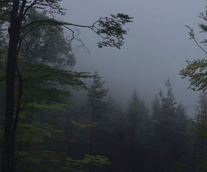 aesthetic, fog, and green image